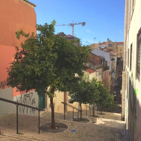 Lisbon (8)