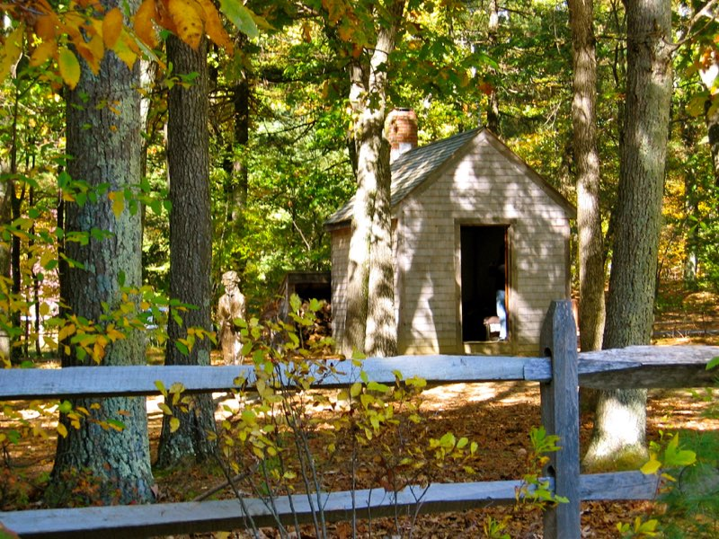 Replica of Thoreau's cabin. Photograph by Barry M. Andrews.