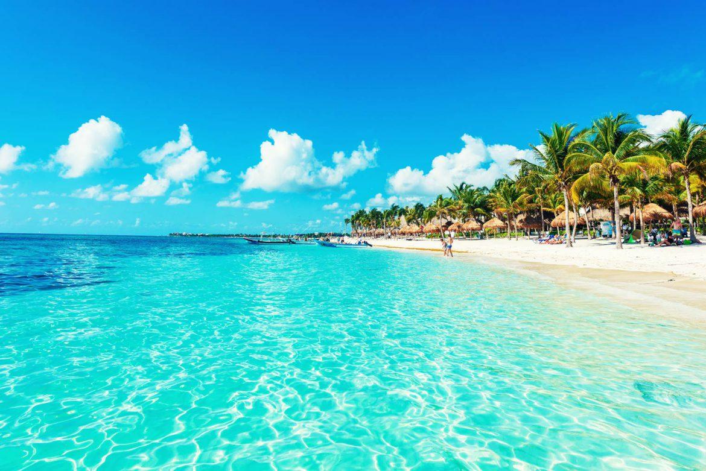 Playa dentro de la Riviera Maya, favorita para llevar a mascotas