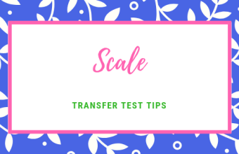 Transfer Test Tips AQE test maths Scale