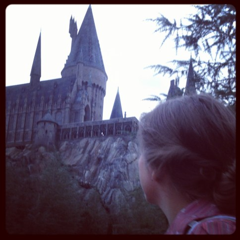 fink-hogwarts-adoption-castle