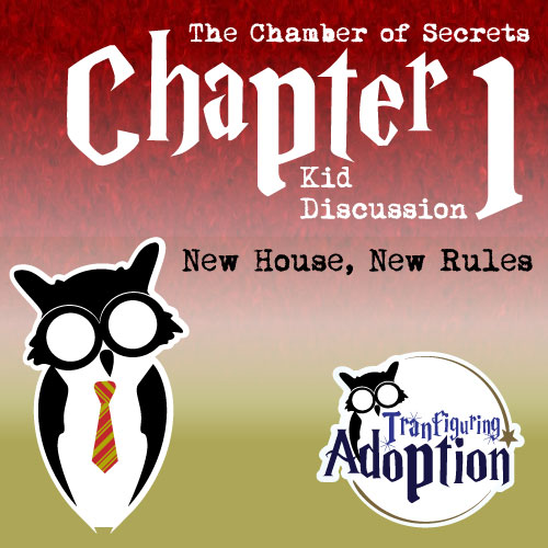 TA-chapter-1-chamber-of-secrets-kids-social-media