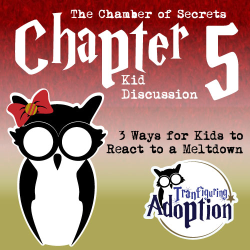 TA-chapter-5-chamber-of-secrets-foster-kids-social-media