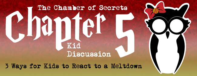 chapter-5-chamber-of-secrets-foster-kids