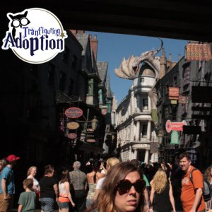 diagon-alley-universal-orlando-crowds-dragon-fun
