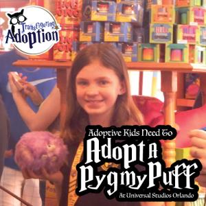 adoptive-kids-need-to-adopt-pygmy-puff-universal-orland-florida