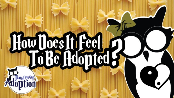 how-does-it-feel-to-be-adopted-infant-adoption-facebook