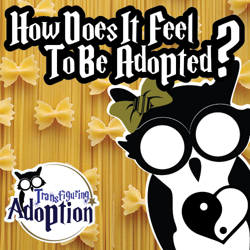 how-does-it-feel-to-be-adopted-infant-adoption-pinterest