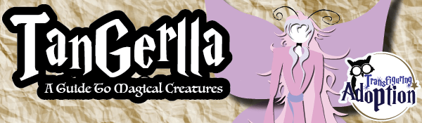 tangerella-guide-magical-creatures-around-your-home-transfiguring-adoption-header