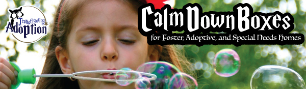calm-down-boxes-foster-adoptive-special-needs-homes-header
