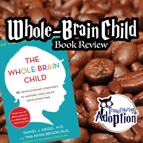 whole-brain-child-book-review-square