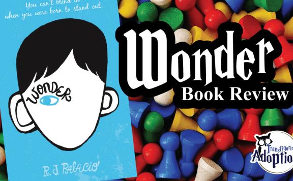 wonder-r-j-palacio-book-review-rectangle