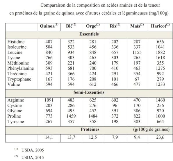 protéines céréales