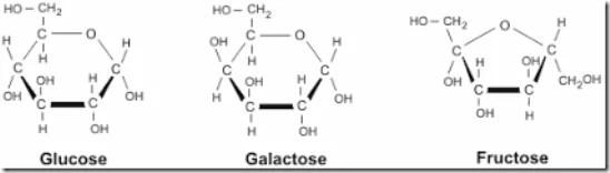 Structure d'hydrate de carbone: glucose, galactose et fructose