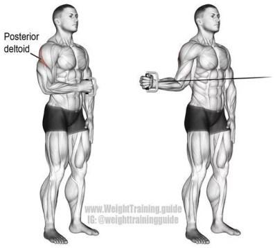 rotation externe de l'épaule à la poulie pour l'échauffement avant le sport