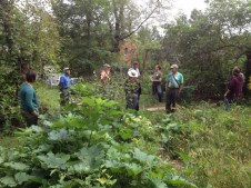 Permaculture Design Workshop at Lillie House