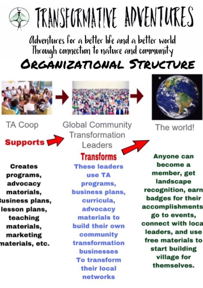 Transformative adventures organizational structure.