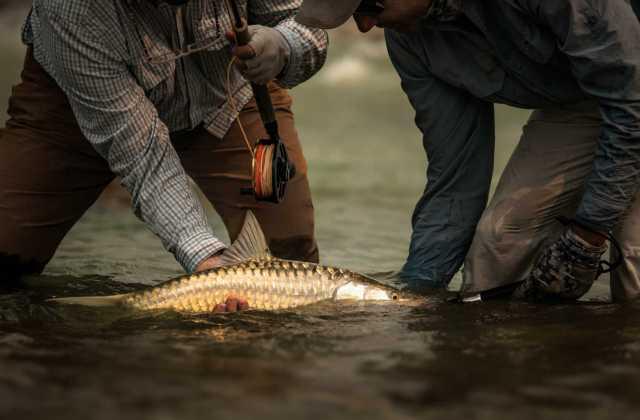 Guided Mahseer Fishing India