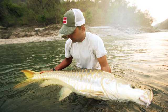 Mahseer fly fishing record