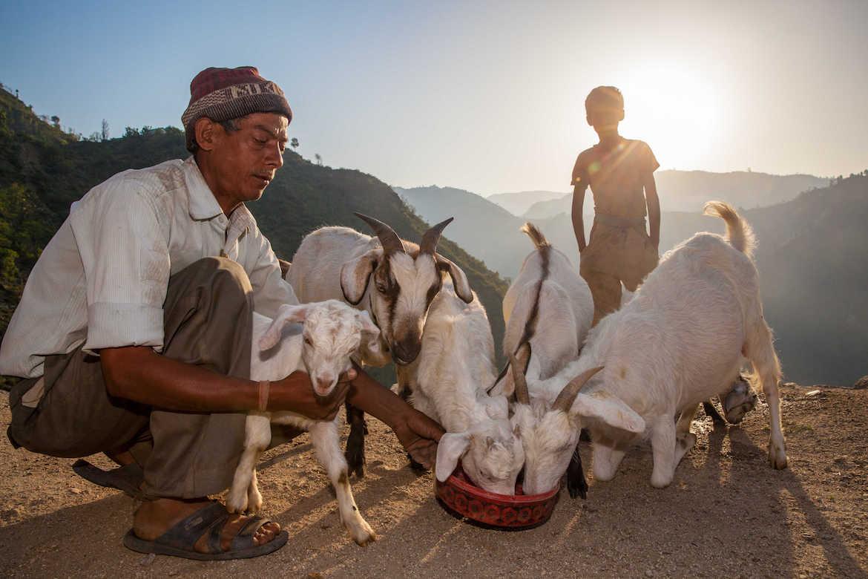 Nepal Mahseer Fishing