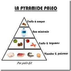 Pyramide-paléo