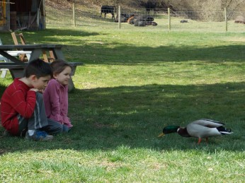 Kids with Duck