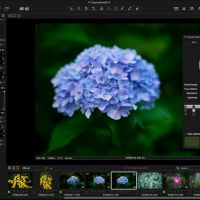 Capture One Pro 8 Review