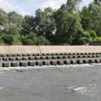 Barajul afectează populaţia de peşte,   care nu îşi mai poate depune icrele în amonte  /  sursa foto: gazetademaramures.ro