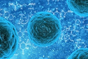 Your-Cells-Are-Listening-How-Talking-To-Your-Body-Can-Help-You-Heal1-300x201