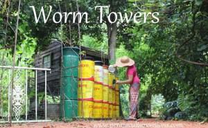 WormPowerTinTowersFeb2014-1024x633