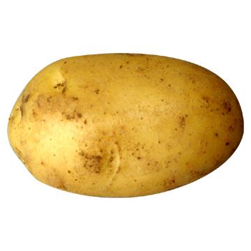 Potatoes are Valve's favourite fruit
