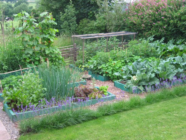 Introduction to Permaculture course | Transition Dartmouth ... on Backyard Permaculture Design id=15809