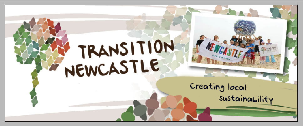 Transition Newcastle banner 2016