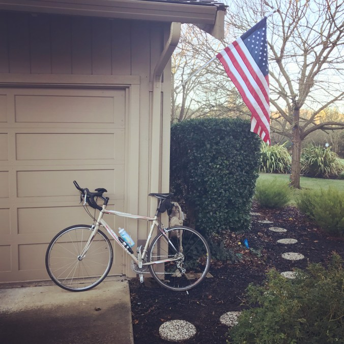 My bike and American Flag during Ironman Training- Month 5
