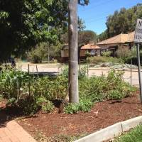 Verge Gardening in Guildford and Surrounds