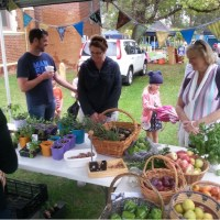 Transition Town Guildford's First Garden & Produce Share:  The Power of Sharing and Connecting with Like-minded People