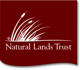 Natural Lands Trust: Brunch With Bobolinks at Stroud Preserve @ Stroud Preserve | West Chester | Pennsylvania | United States