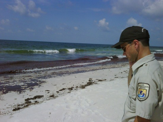 NWR employee on Alabama beach