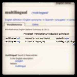 Multilingual Social Media Management