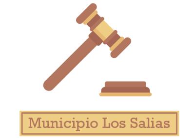 Ordenanza de Transparencia y Acceso a la Información Pública: Municipio Los Salias