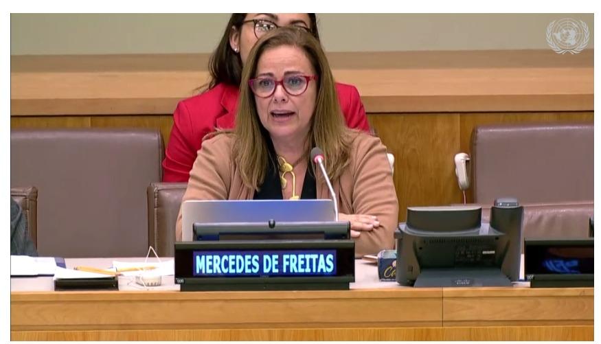 Mercedes De Freitas: La corrupción y la impunidad están causando muertes en mi país