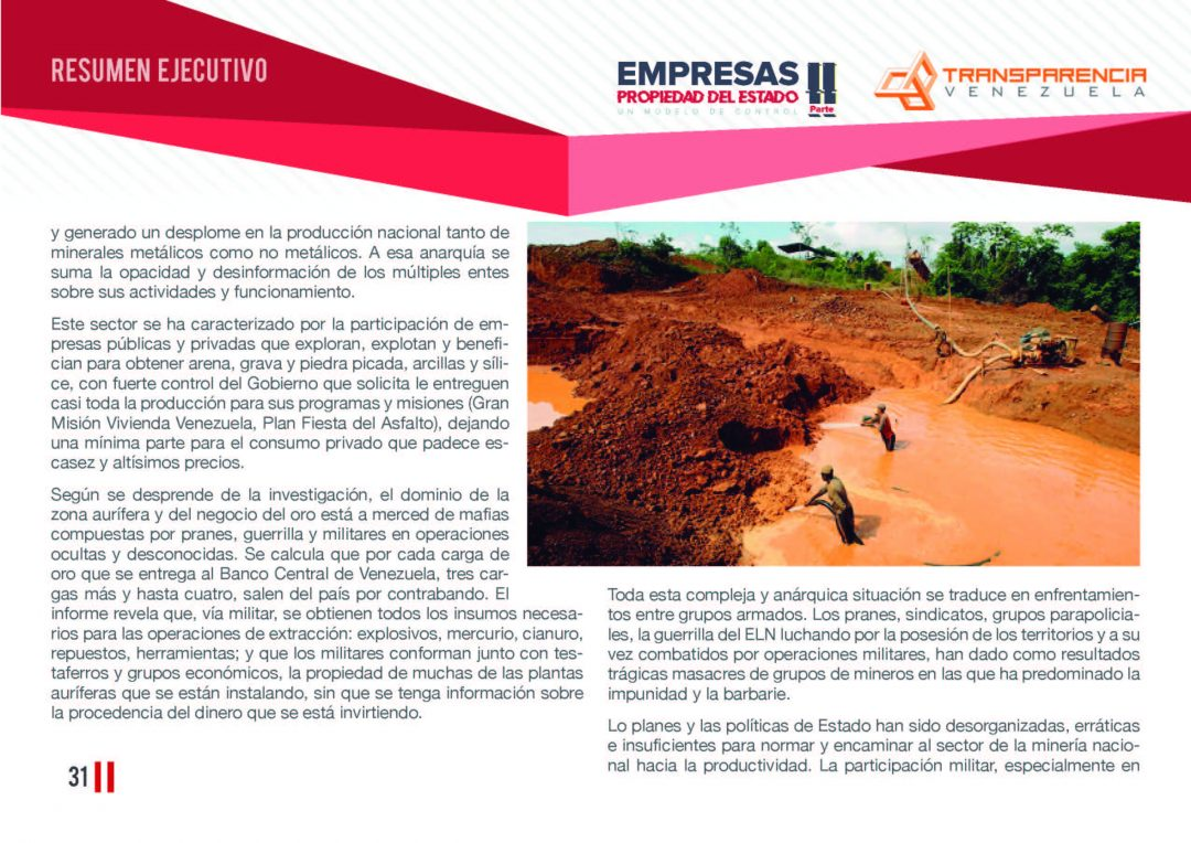 EPE II - Resumen ejecutivo, Transparencia Venezuela_Página_31