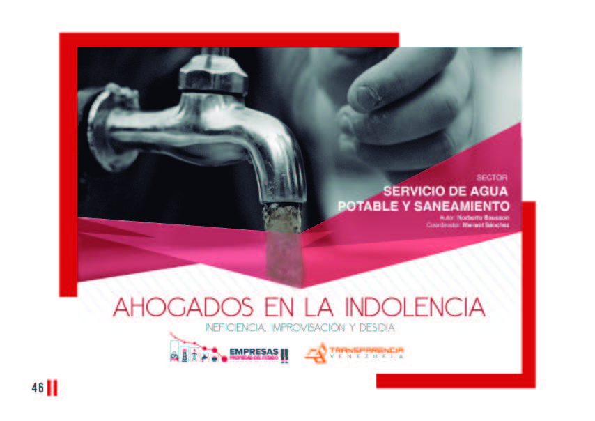 EPE II - Resumen ejecutivo, Transparencia Venezuela_Página_46