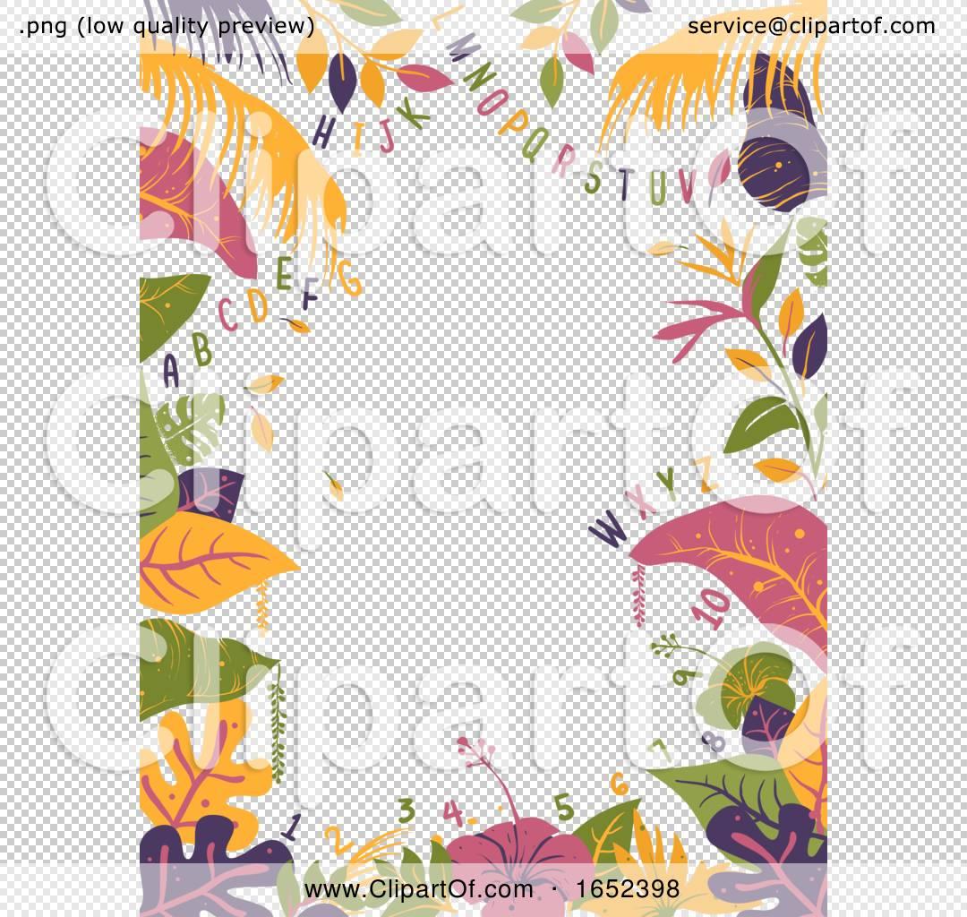 Tropical Alphabet Numbers Illustration By Bnp Design Studio