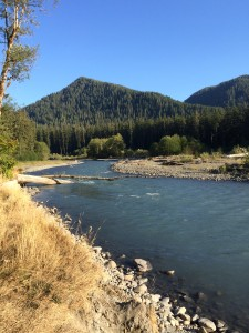 The Hoh River