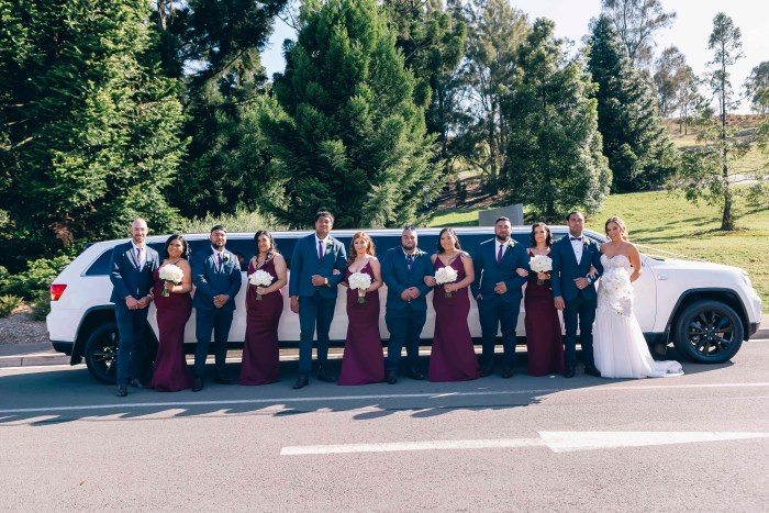 bridal party at mount annan