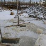 Alaska Beaver Snaring Pics
