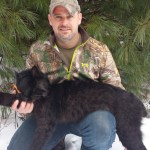 Black bobcat snared in N.B., only 12th ever recorded in North America – New Brunswick – CBC News