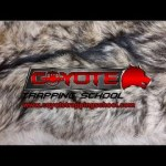 Want to Learn to Trap Coyotes? Check out Coyote Trapping School!