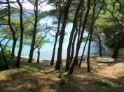 Mljet Island, Croatia © trashbus/Renata Britvec, 2011